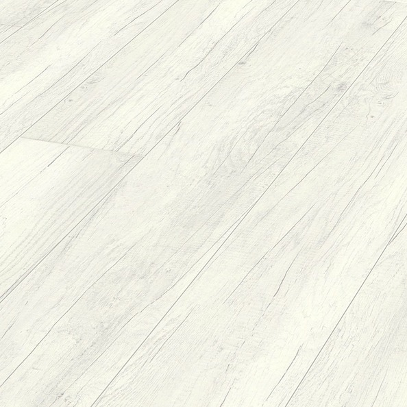 Opaque white oak 6536